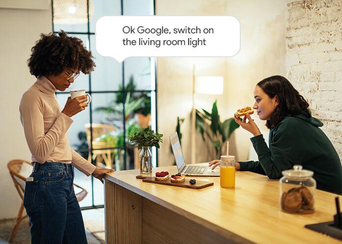 Delta Dore Google Assistent 2